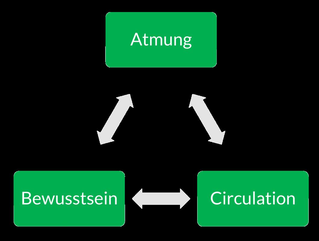 abc_atmung_bewusstsein_circulation